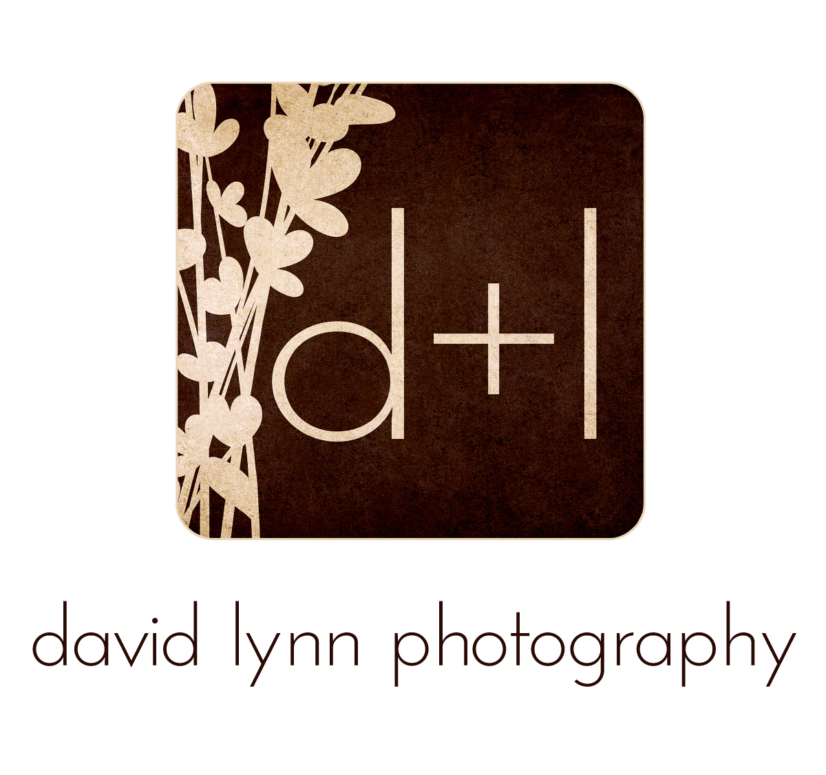 David Lynn Photography logo