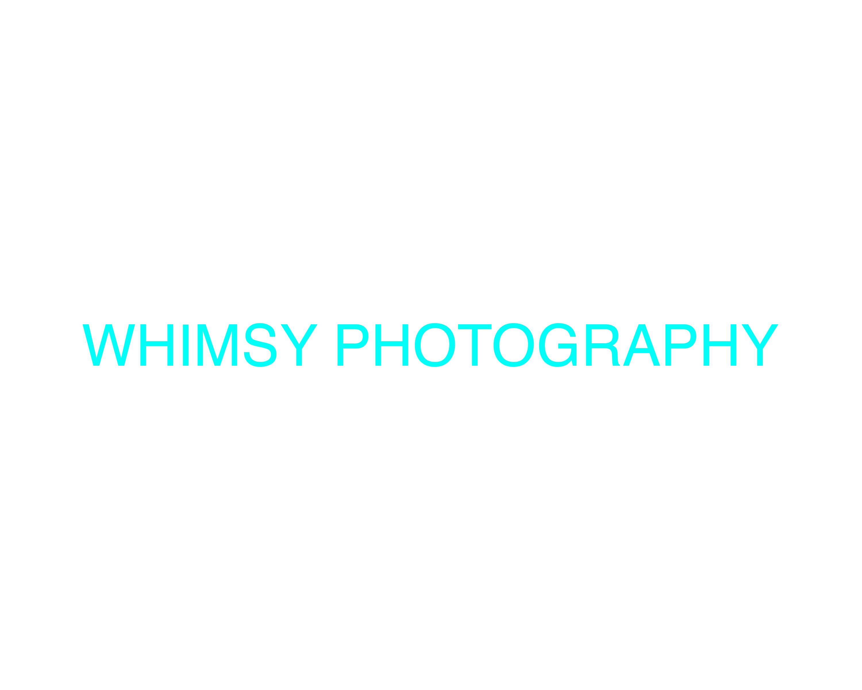Whimsy Photography logo